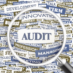 Internal Audits,CPT,ICD-9 codes,Utilization
